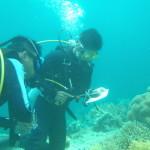 シキホール島トレーニング フィリピン人少年と青年の育成術、覚醒法
