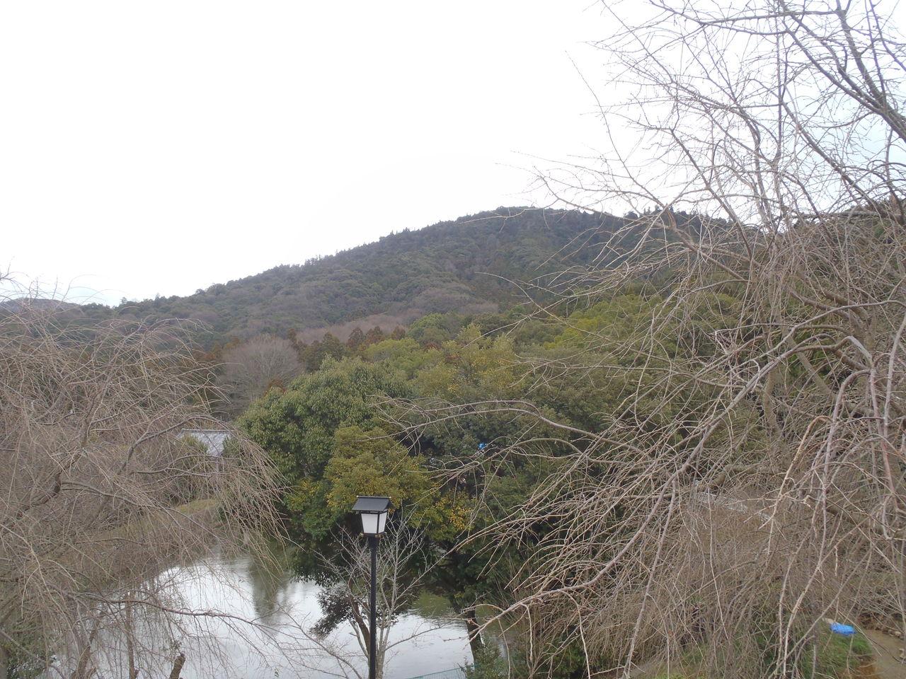 日本一時帰国充電の旅 粉雪舞う京都、奈良編