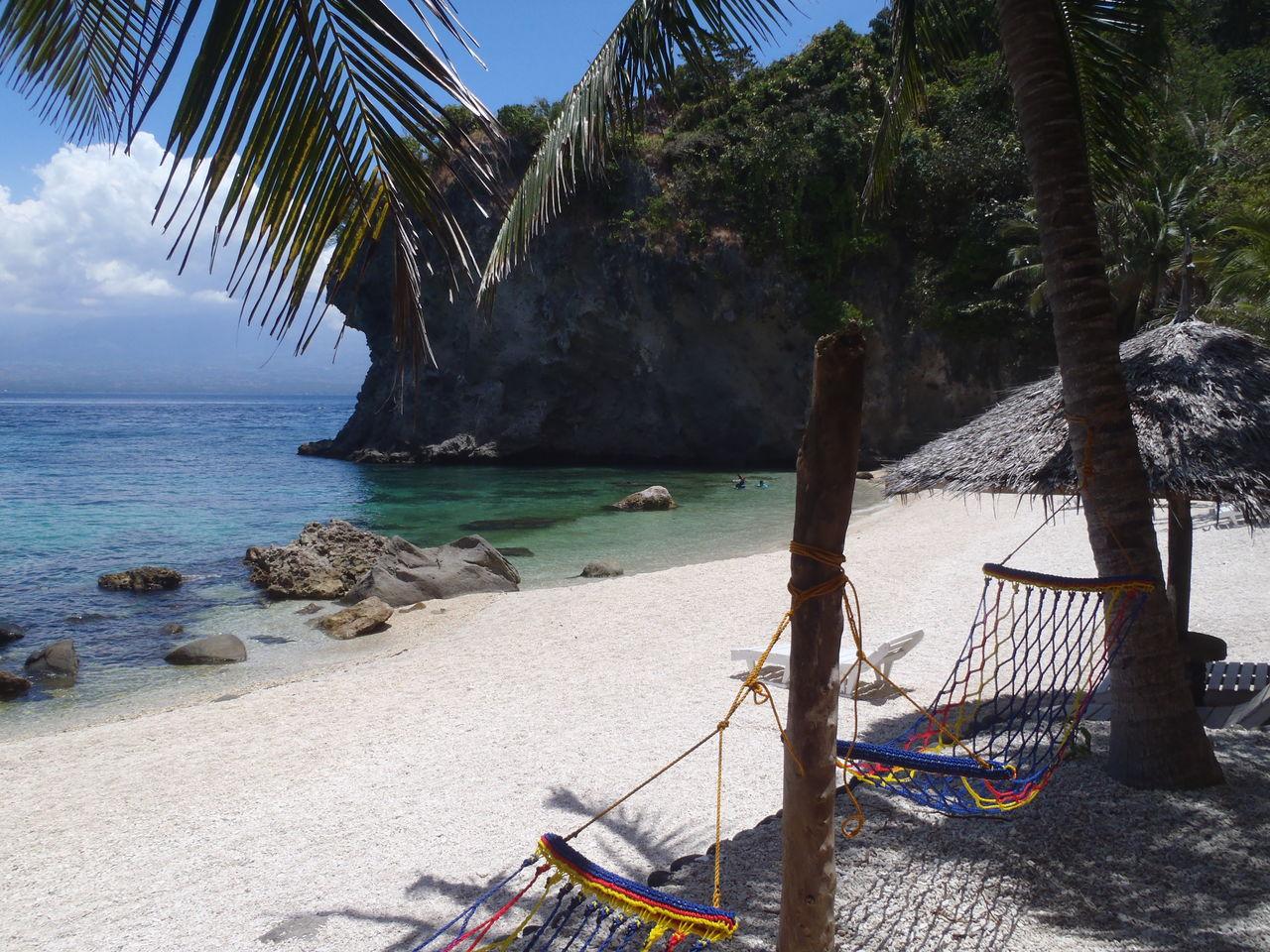 自然と共にアポ島滞在