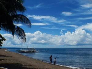 ダーウィンのビーチ