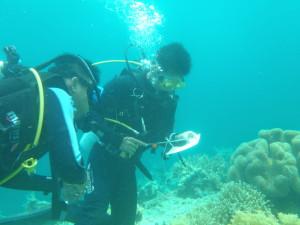 diving_englishstudy_04
