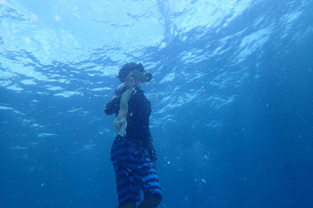 スキンダイビングで日本の男子高生海底クリーニング