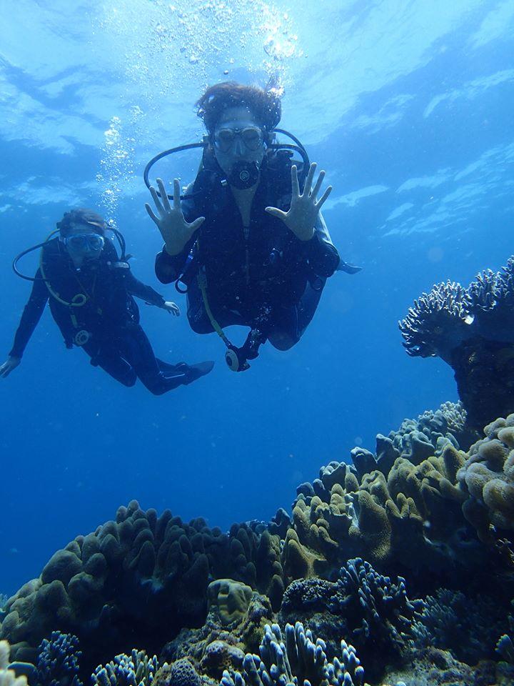 アポ島ダイビングは初心者でも安心