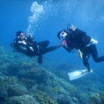 マニラ駐在ダイバー必見、連休はドゥマゲッティでダイビング