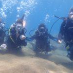 ドゥマゲッティで女子大生4人体験ダイビング